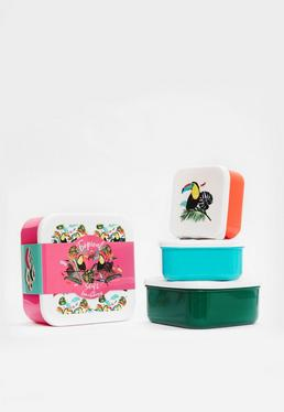 4 Tropical Lunch Boxes