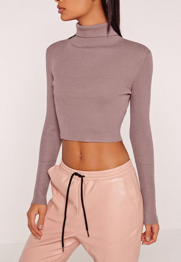 Purple Basic Roll Neck Long Sleeve Cropped Sweater | Missguided