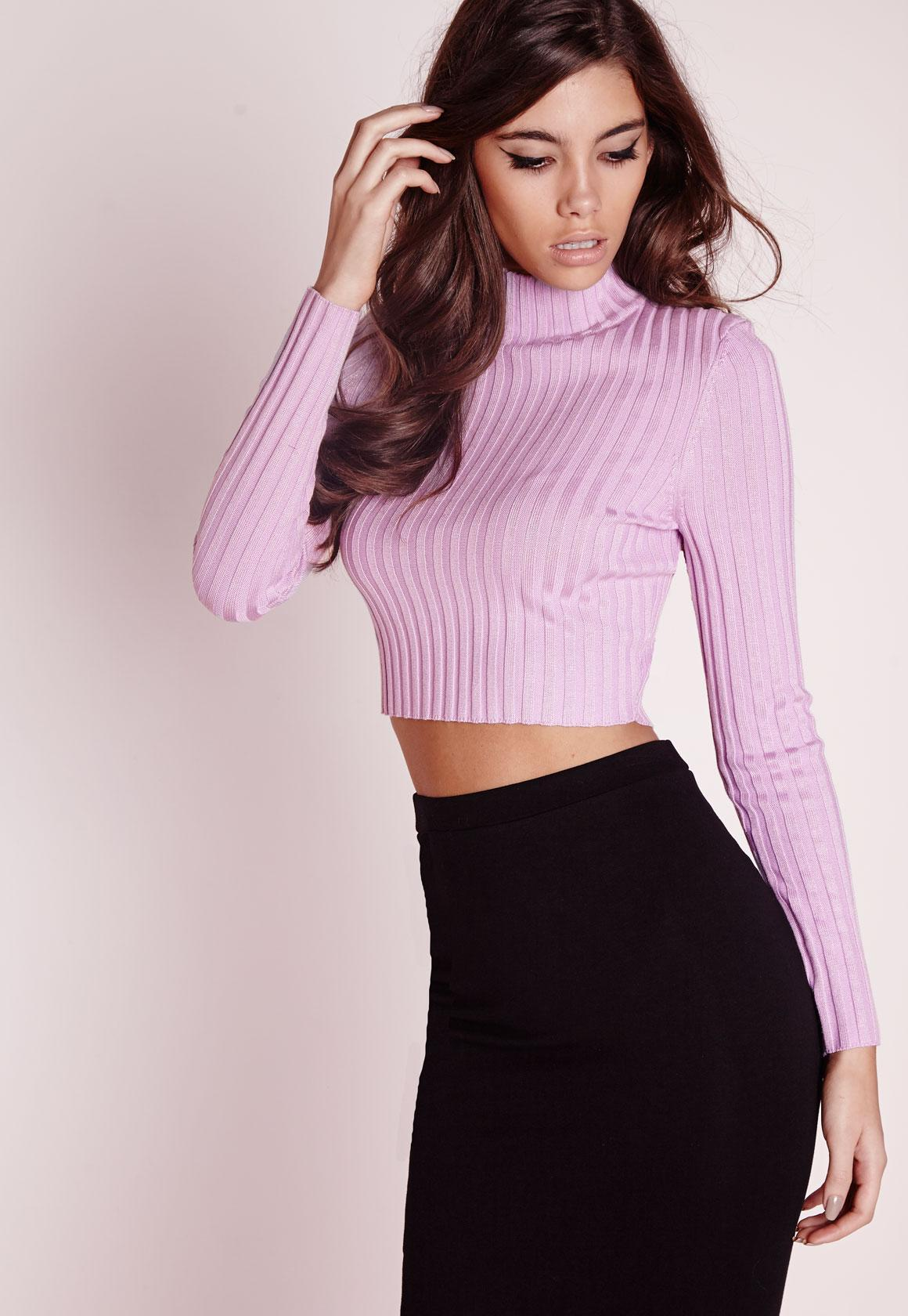 Long Sleeve Turtle Neck Knitted Crop Sweater Purple | Missguided