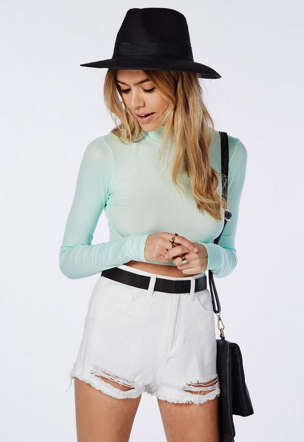 Ribbed Turtle Neck Long Sleeve Crop Top Mint