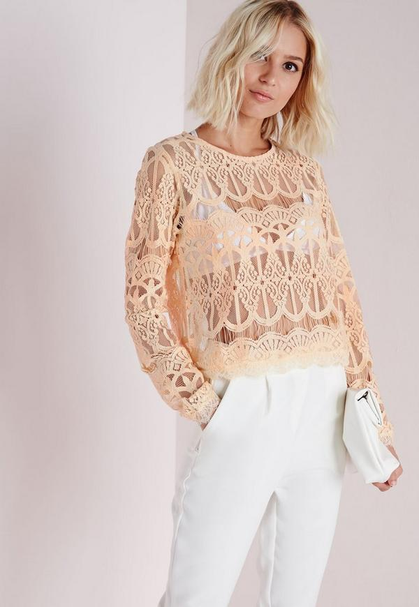 Lace Long Sleeve Crop Top Nude